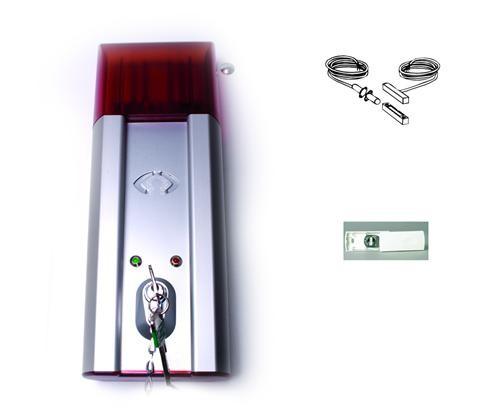 Reed deurcontact opbouw met 2 m kabel