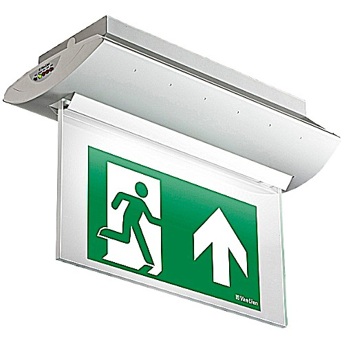 Optilux OLN-1/ZT/LED/DZ Plafond+PP Picto